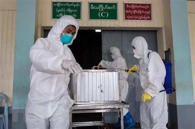 缅甸年初以来甲型H1N1流感致死71人 hinh anh 1