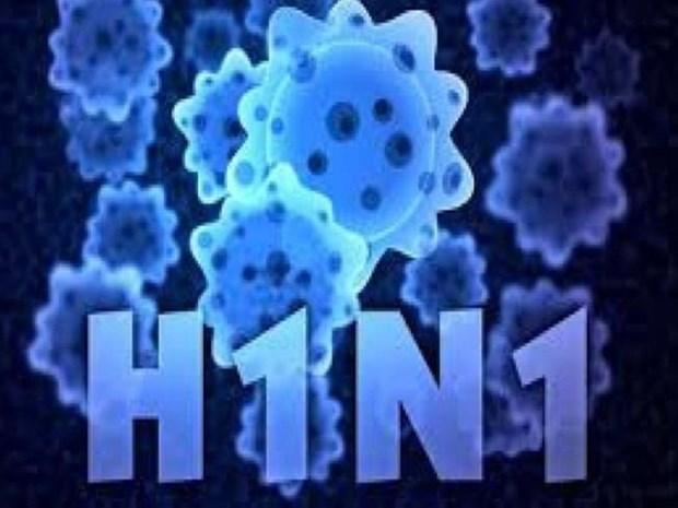 缅甸年初以来甲型H1N1流感致死71人 hinh anh 2