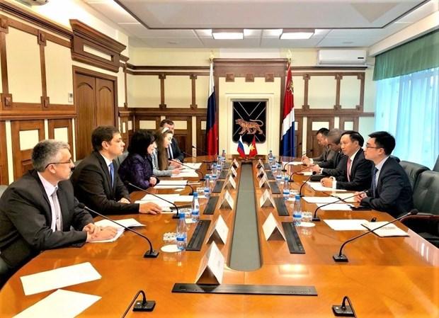 俄罗斯滨海边疆区与越南各地方之间合作关系呈现出强劲发展势头 hinh anh 2