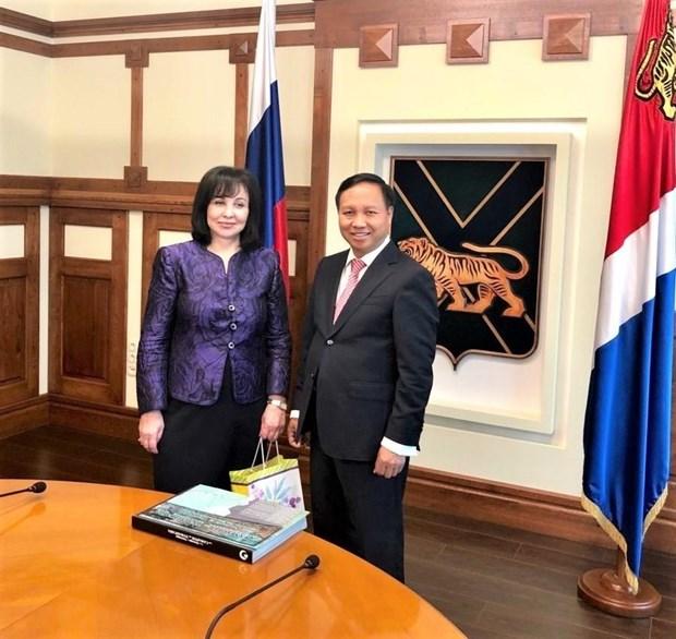 俄罗斯滨海边疆区与越南各地方之间合作关系呈现出强劲发展势头 hinh anh 1