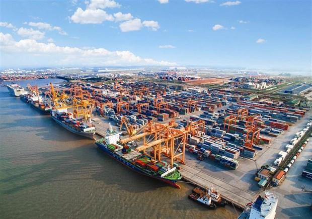 越南海防市物流业巨大发展潜能有待挖掘 hinh anh 1