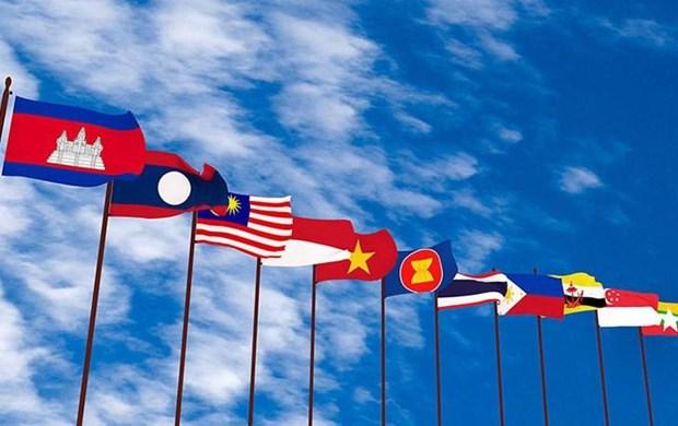 越南与东盟大家庭同行二十四年 hinh anh 1