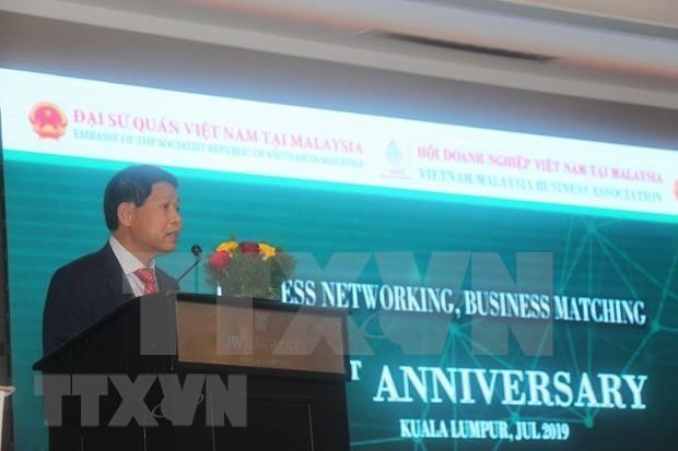 越南与马来西亚努力向双边贸易额150亿美元的目标迈进 hinh anh 1