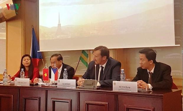 芹苴市代表团赴捷克了解经贸合作机会 hinh anh 1