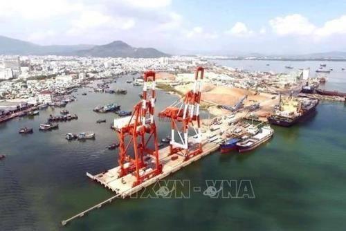 促进越南船舶运输业现代化 hinh anh 1