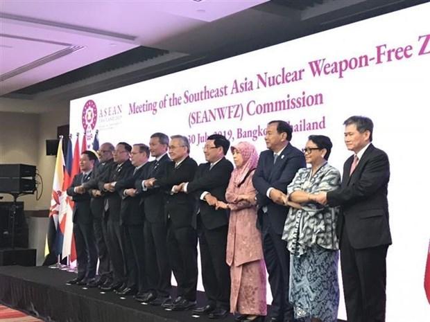 越南出席东南亚无核武器区条约委员会会议 hinh anh 1