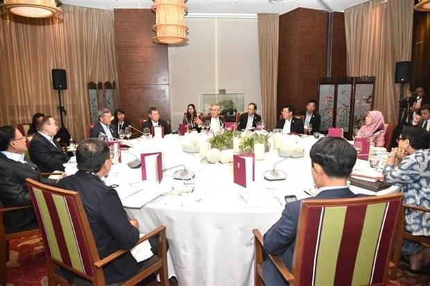 越南出席东南亚无核武器区条约委员会会议 hinh anh 2