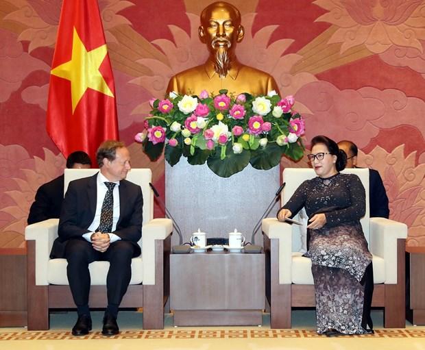 越南国会主席阮氏金银会见欧盟驻越代表团团长安格莱特 hinh anh 1
