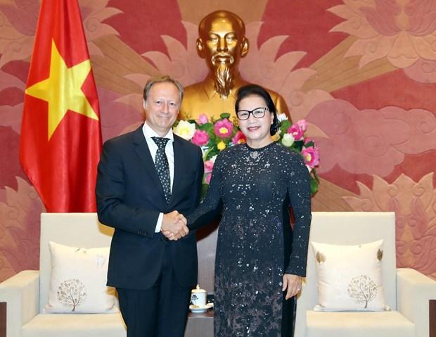 越南国会主席阮氏金银会见欧盟驻越代表团团长安格莱特 hinh anh 2