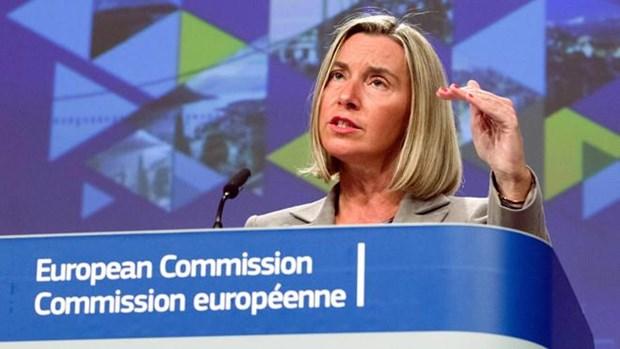 欧盟公布与东盟加强安全合作计划 hinh anh 1
