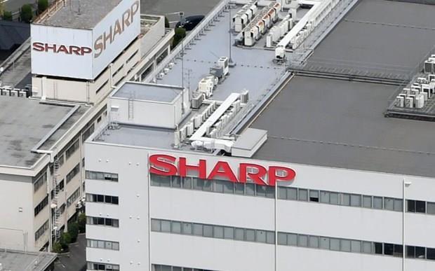 日本电子公司夏普将生产线转移到越南 hinh anh 1