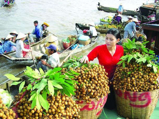中国是越南农产品最大出口市场 hinh anh 1