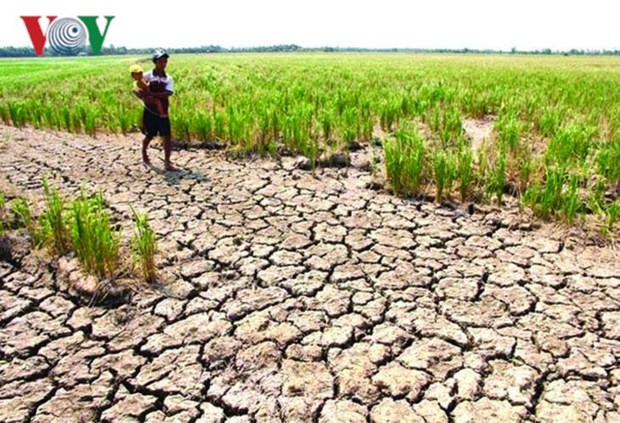 湄公河水位降至最低 威胁下游各国 hinh anh 1