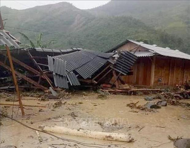 第三号台风环流给越南许多地方造成重大损失 hinh anh 1