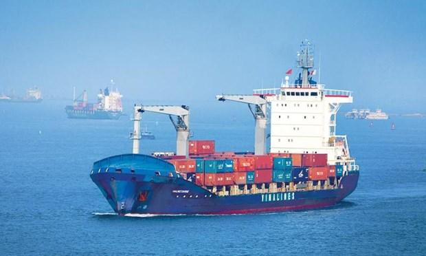 越南海运船队规模在东盟排名第四 hinh anh 2