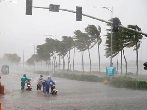 第三号台风:越南政府总理指导各部委和地方政府立即开展救灾工作 hinh anh 1