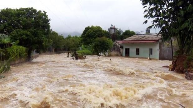 第三号台风:越南政府总理指导各部委和地方政府立即开展救灾工作 hinh anh 3