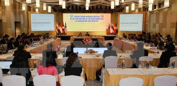 东盟农业和林业高官会议在承天顺化省开幕 hinh anh 2