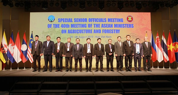 东盟农业和林业高官会议在承天顺化省开幕 hinh anh 1