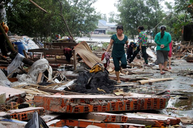 越南各地方抓紧展开第三号台灾后恢复重建工作 hinh anh 3