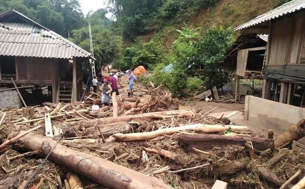 越南各地方抓紧展开第三号台灾后恢复重建工作 hinh anh 1