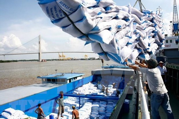 越南前7月大米出口量超过400万吨 hinh anh 1