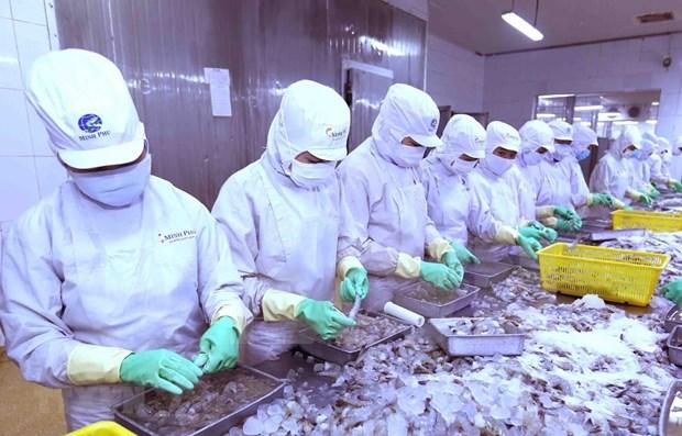 芹苴市与日本企业将虾壳加工成为食品工业原料 hinh anh 1