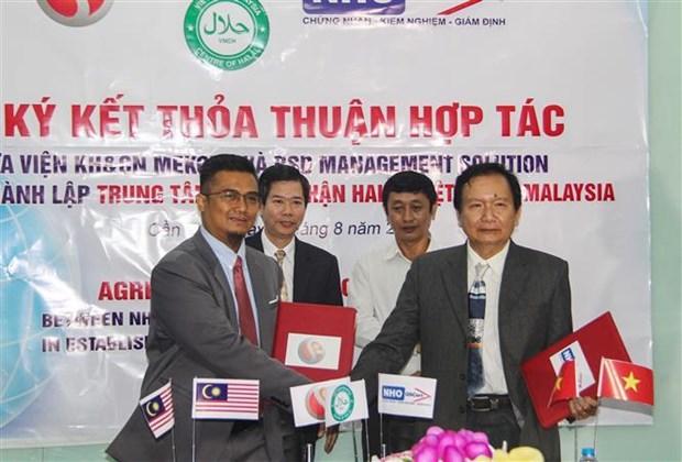 越南—马来西亚清真食品认证中心在芹苴市正式成立 hinh anh 1