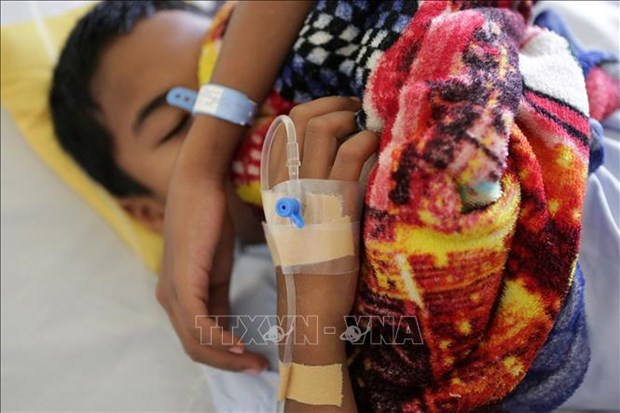 菲律宾登革热暴发 政府依旧禁用有风险疫苗 hinh anh 1