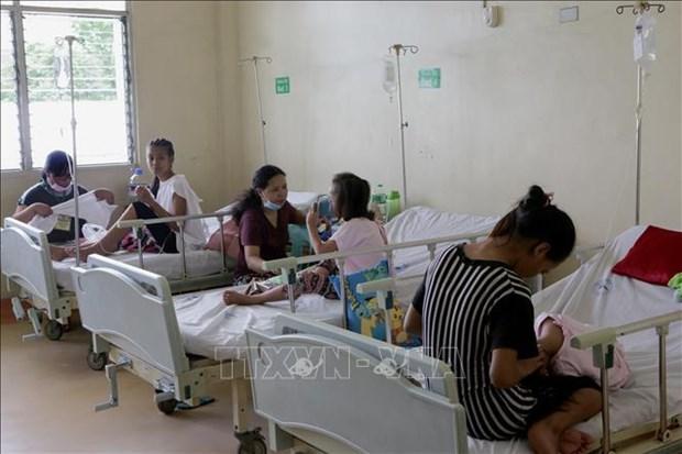 菲律宾登革热暴发 政府依旧禁用有风险疫苗 hinh anh 2