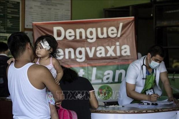 菲律宾宣布全国进入登革热疫情暴发状态 hinh anh 1