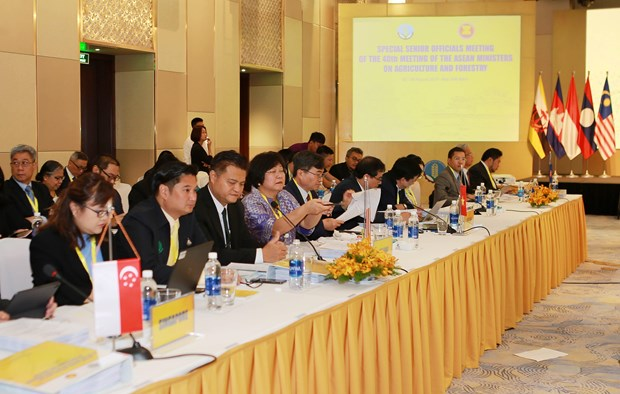 第18届东盟与中日韩农林部长会议在越南承天顺化省举行 hinh anh 2