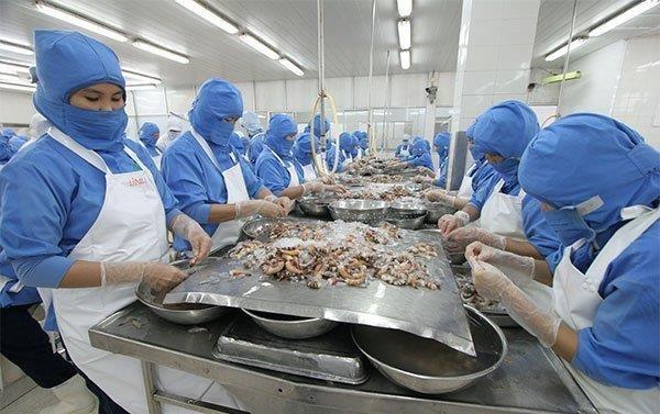 促进通过正贸渠道对中国市场的出口 hinh anh 1