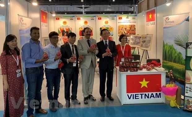 越南参加南亚最大国际酒店博览会 hinh anh 1