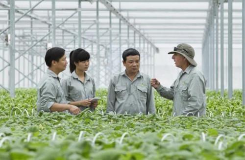 2030年越南有农技培训需求的人数预计达600万 hinh anh 1