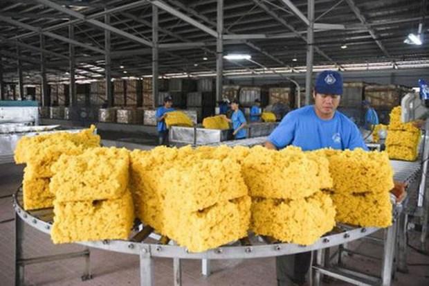 2019年前7个月越南橡胶出口额同比增长4.5% hinh anh 1