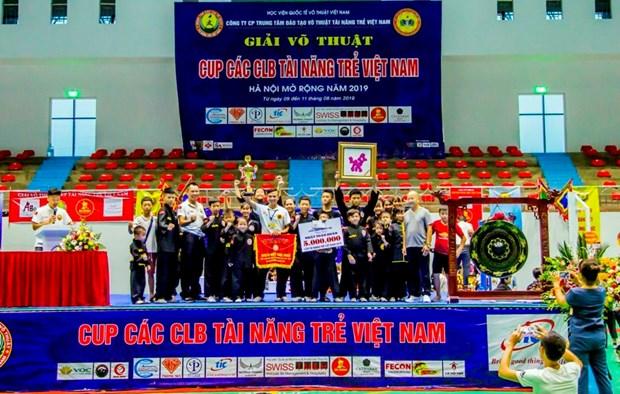 2019年河内越南年轻人才俱乐部杯武术公开赛落下帷幕 hinh anh 1