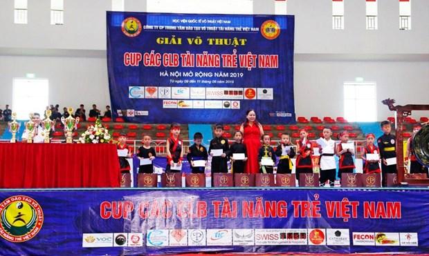 2019年河内越南年轻人才俱乐部杯武术公开赛落下帷幕 hinh anh 3