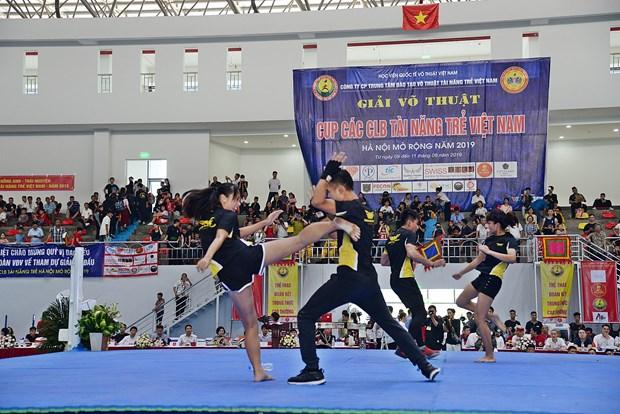 2019年河内越南年轻人才俱乐部杯武术公开赛落下帷幕 hinh anh 2