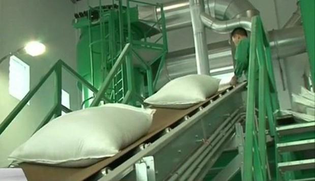 泰国大米价格高于亚洲其他国家供应国 hinh anh 1