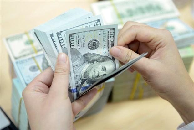 8月13日越盾对美元汇率中间价上调11越盾 hinh anh 1