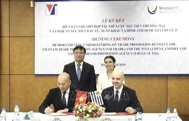 越南与乌拉圭加强贸易合作关系 hinh anh 1