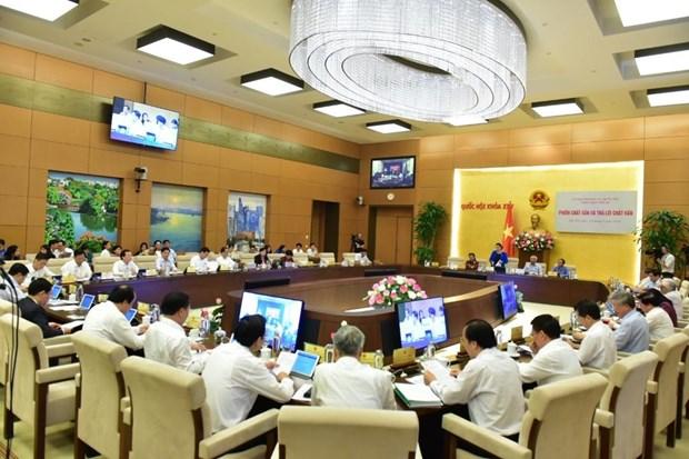 国会常委会对各专题监督和专题询问活动进行总结 hinh anh 1