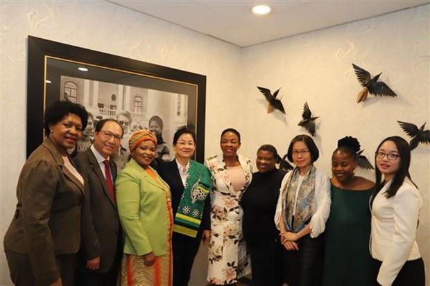 越南与南非加强合作 致力于妇女的发展 hinh anh 2