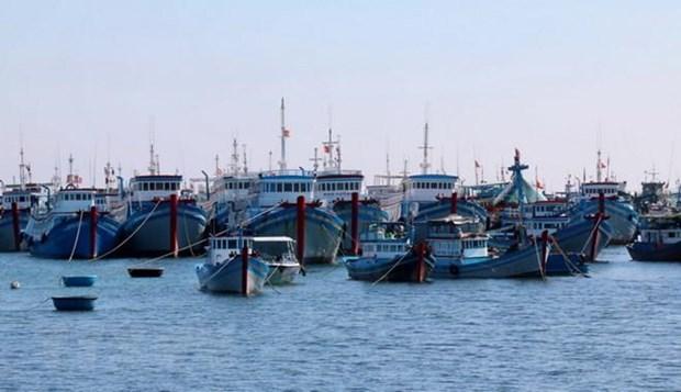 致力成为一个海洋强国、靠海致富的越南:征服深海 实现海洋强国之梦(第四篇) hinh anh 3