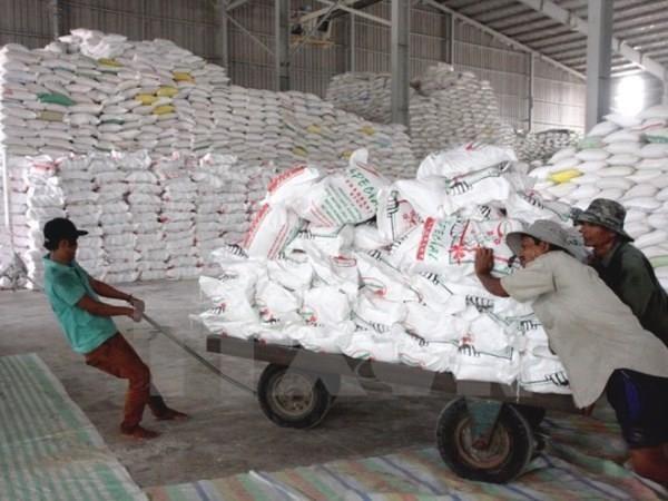 中国大米需求趋于冷清导致越南大米价格下降 hinh anh 1