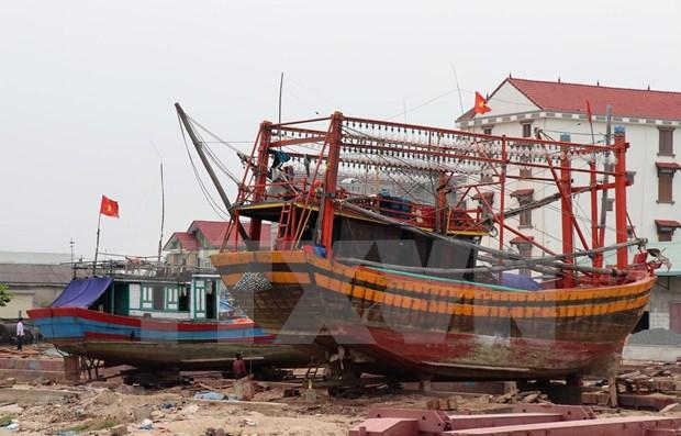 为渔民提供协助 坚持靠海谋生 维护海洋岛屿主权 hinh anh 2
