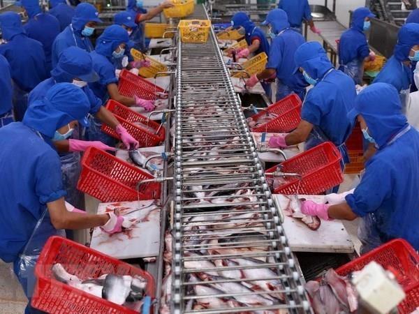 越南水产品对中国的出口活动呈现复苏态势 hinh anh 2