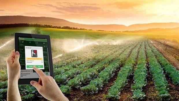 在农业发展中加强科技应用 hinh anh 1
