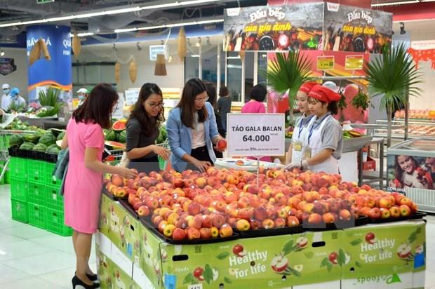 越南国内零售企业的新机会 hinh anh 2